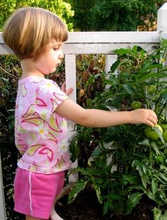 Edible Society: Growing Good Food & Sustainable Communities Seattle, Washington  #Kids #Events