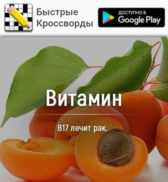 Walk Around The World, Google Play, Did You Know, Fun Facts, Vitamins, Funny Pictures, Fruit, Learning, Healthy