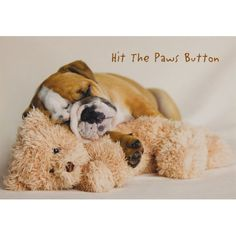 Hit The Paws Button Greeting Card