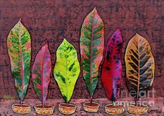 Croton Leaves in Little Vases. #crotons #gardening #leaves #plantart #multicolor