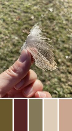 WALK THE TALK - Found this feather while walking Travie by the river. Love the pattern. Check out the blog to find out how to track your story x