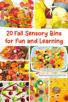 These fall sensory bins are a great inspiration for fun and creative learning! Kids love hands-on learning with fall sensory bins. Lots of sensory bin ideas to try. Quiet Time Activities, Autumn Activities For Kids, Fall Crafts For Kids, Kid Crafts, Fall Sensory Bin, Sensory Bins, Sensory Play, Sensory Bottles, Fun Learning