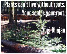 Yogi Bhajan quote...