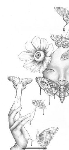 Moth surreal pencil drawing, limited signed print, size 13inx19in, size 11inx8.5in, eyeball illustration, Wall Decor Art Poster surrealism