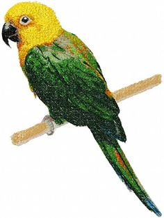 Parrot photo stitch free embroidery design 7 - Photo stitch embroidery designs - Machine embroidery community