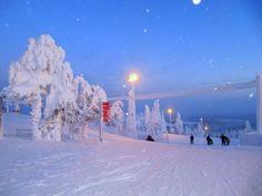 Snow-trees in Lapland