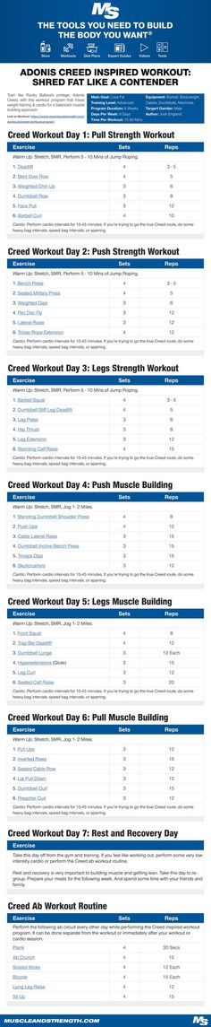 Shred fat like a champion with this Adonis Creed inspired workout! The principles behind this program and the actual training will be centered more so on the fictional character Adonis Creed, as opposed to Michael B Jordan. 300 Workout, Workout Routine For Men, Weight Training Workouts, Gym Workout Tips, Shred Workout, Lifting Workouts, Workout Men, Leg Strength Workout, Strength Training