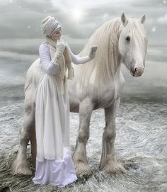 20 Gorgeous White Horses Pictures