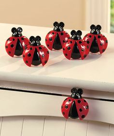 Maximize the cuteness of your kitchen with this ladybug collection. Accent your cabinets and drawers with the Set of 6 Drawer Pulls. Each cold cast ceramic and metal pull x is shaped like a ladybug. Ladybug Art, Ladybug Crafts, Lakeside Collection, Class Decoration, Metal Drawers, Wood Tools, Kitchen Collection, Black Spot, Ceramic Plates