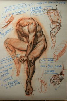 Exceptional Drawing The Human Figure Ideas. Staggering Drawing The Human Figure Ideas. Human Anatomy Drawing, Gesture Drawing, Guy Drawing, Life Drawing, Drawing People, Human Figure Drawing, Figure Sketching, Figure Drawing Reference, Anatomy Reference
