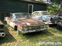 Classic Cars Rotting Rotting Away Impala Fest Page Jorge