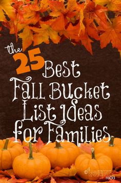 This year, we made a Fall Bucket List. It's a list of things that me and my family are going to attempt to accomplish this Fall. We may not get through the whole list, but we definitely plan to eat as many donuts and drink as much apple cider as possible. (even throwing in a little adult version with my Apple Cidertini!) If you're stumped on some suggestions to do this Fall, then check out this list of several great ideas and take action- The 25 Best Fall Bucket List Ideas for Families