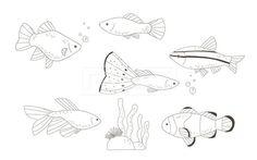 SPAI148, 프리진, 일러스트, SPAI148a, 동물, 에프지아이, 라인, 물고기, 생선, 어류, 애완동물, 반려동물, 구피, 미역, 산호, 열대어, 흰동가리, 일러스트, illust, illustration #유토이미지 #프리진 #utoimage #freegine 19952201 Painting Sheets, Ocean Diorama, Fish Design, Fish Art, Gourds, Fish Tattoos, Art For Kids, Quilt Patterns, Rooster
