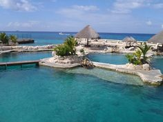 Cozumel - A favorite location for divers and snorkelers from all over the world. Only a short ferry ride from Playa del Carmen, Cozumel is an island 30 miles from north to south and 10 miles from east to west.  Though small enough to explore in a day or two it is filled with rich history, culture, fun and sun!