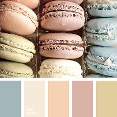 """dusty"" blue, ""dusty"" lilac, ""dusty"" orange, blue-color, color of mint macaroon, colours of vanilla macaroon, gentle tones, macaroon colors, olive color, orange color, pastel shades, pink color."