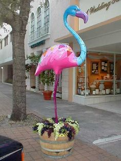 Flamingos In The Gables #flamingos