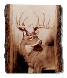 Pyrography,Wood Burning,Buck on Bass Wood, Original