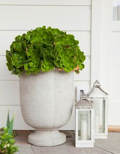 Love this pot with succulents!