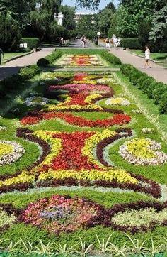 Beautiful flower carpet # Ciechocine  Poland