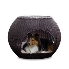 The Refined Canine™ Indoor/Outdoor Igloo Pet Bed with Cushion ($125) - Bed Bath and Beyond