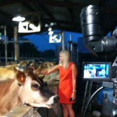 Allie Ware makes new friends during her morning live shot.