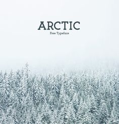 Arctic is a modern slab serif typeface. Arctic is based on my original font Ikaros with many changes to make arctic its own, with its own feel. It is built with strong lines witch show in its burly nothern feel. It is free for both personal and commercial…