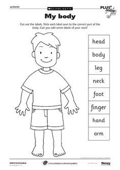 Body Parts worksheet- can use as a dictionary to label parts.