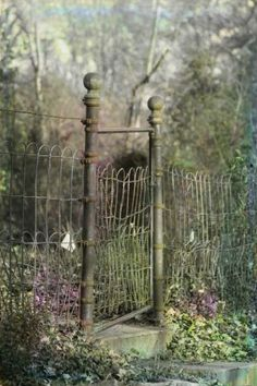 Love this gate and fence