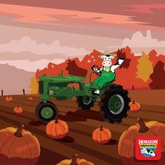 Happiness is finding the perfect pumpkin! Halloween Snacks, Fall Halloween, Spooky Food, Peanuts, Pumpkins, Kid Stuff, Monster Trucks, Meal, Happiness