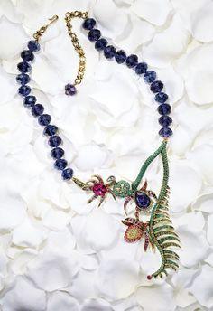 collect land, curvi fashionista, jewelri box, brilliant trinket, malefic collect
