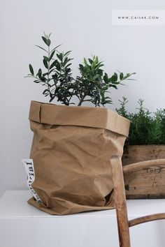 Brown paper pot covers - branded bags for sale, wallets and bags, discount bags *sponsored https://www.pinterest.com/bags_bag/ https://www.pinterest.com/explore/bag/ https://www.pinterest.com/bags_bag/pouch-bag/ http://www.zappos.com/bags