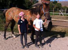 Kids horse art Work