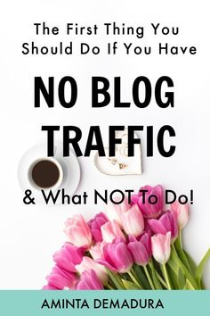 140 Best Organic Traffic to a blog images in 2019