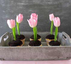 Flowers in the Dirt Cupcakes, Birds, Butterflies & Garden Fun Foods & Creative Cuisine (includes directions)