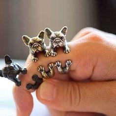 Fransk Bulldog Ring