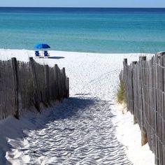 19 best jolly roger surfside beach sc images beach vacations rh pinterest com