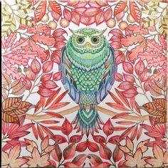 The 10 Best Secret Garden Coloring Book Images On Pinterest
