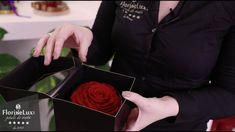 Trandafiri criogenati: pret, cum ii alegi, de unde comanzi