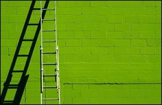 Pantone 2017 was revealed just a couple of days ago and we are all already in love with it: Greenery (Pantone Greenery is the symbol of new beginnings, a refreshing and revitalizing shade of green with a really small dose of … Pantone 2017 Colour, 2017 Colors, Lime Green Walls, Pantone Greenery, Color Of The Year 2017, Scenery Photography, World Of Color, Green Colors, Bright Green