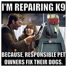 ''I'm repairing K-9 because responsible pet owners fix their dogs.'' -- The 10th Doctor (Doctor Who - BBC Series) source: http://www.buzzfeed.com/tomphillips/ranking-every-episode-of-the-modern-doctor-who