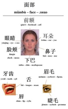 Mandarin Chinese From Scratch
