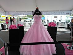 My Fabulous Quince Expo