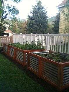 Raised garden beds - corrugated steel and cedar. Would love to modify this and have it be a barrier (aka fence) between properties....