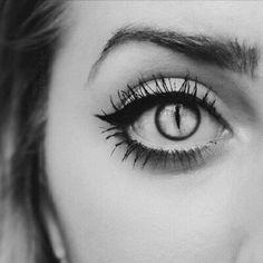 animal contacts•°•✧ Pinterest - @ Tanyacrumlishx•°•✧