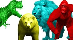color Animals Fight | Color Animals Songs | 3D Animals Sounds | Color Animals Finger Family | Rhymes https://youtu.be/8mhk_bm90nk