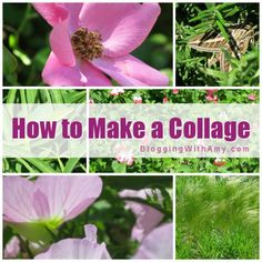 How-to Make a Photo Collage  http://bloggingwithamy.com/how-to-watermark/#