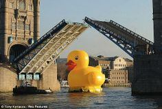 A 50-Foot Giant Rubber Duckie Floats Down The Thames In London - DesignTAXI.com