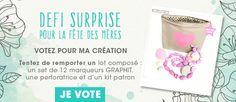 Votez pour moi en laissant un commentaire sous mon tutorial SUR le blog de Rougier et Plé !