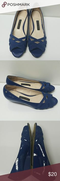 Dana Bucchman wedge heels. Size 9M These shoes are in great used condition. They are royal blue in color. Please refer to the pictures. Dana Bucchman Shoes Wedges