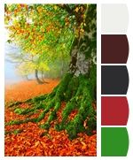ColorSnap by Sherwin-Williams – ColorSnap by Katherine T.